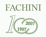 FACHINI GEARS S.p.A.